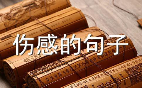 《爱情公寓》经典语录,经典台词完整版(三)